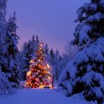 Julerabat på business case kursus hos IDG
